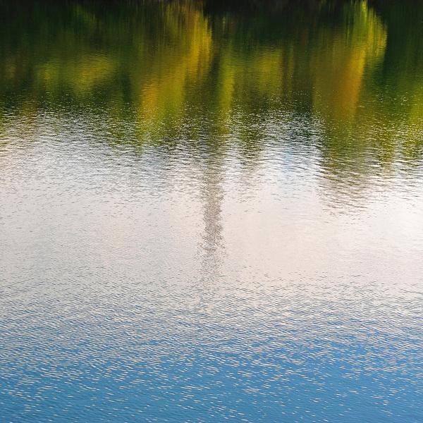 Réflexion champêtre