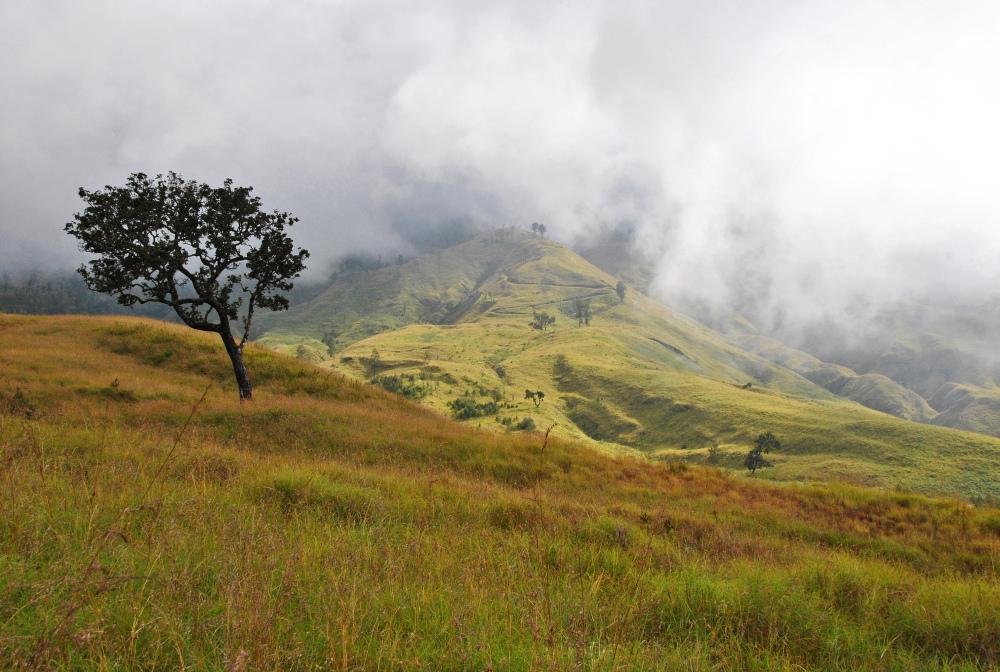 Trek vers le Mont Rinjani #1