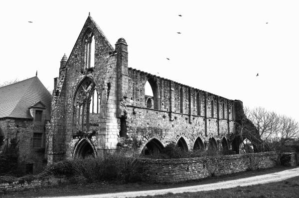 Abbaye de Beauport #1
