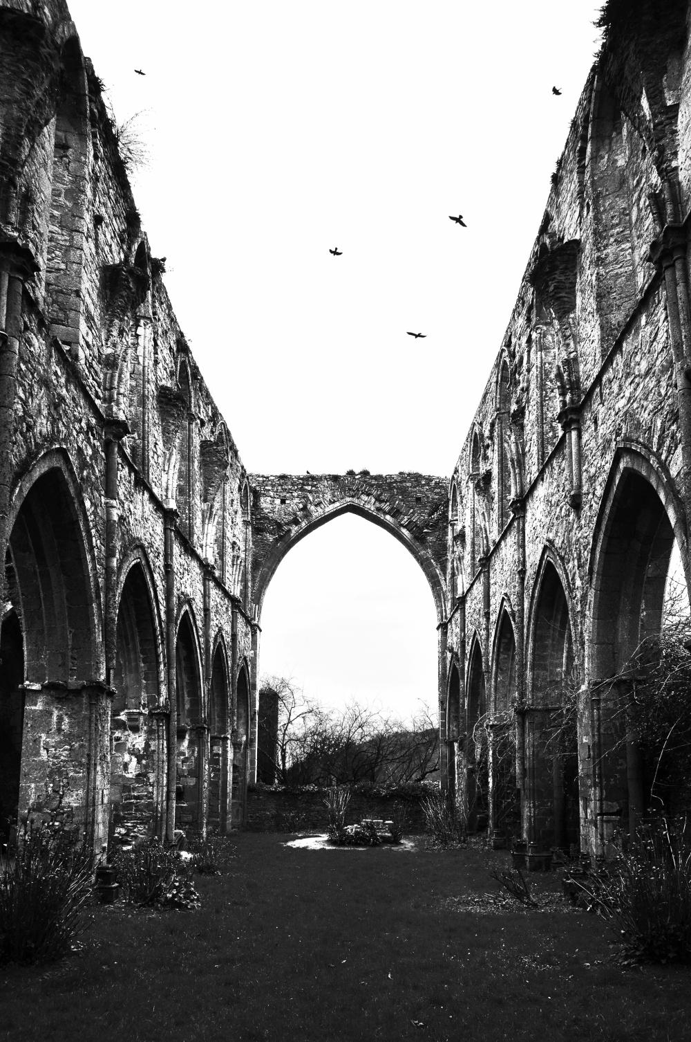 Abbaye de Beauport #3