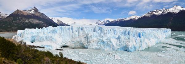 Argentine #8
