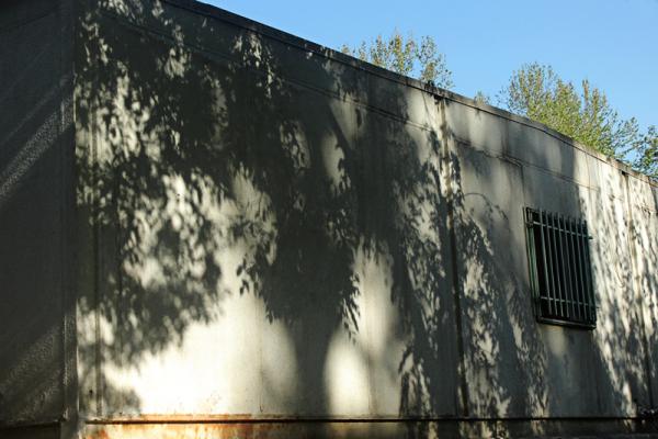 & Green Shadow.