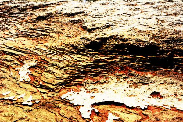 Textures - terra