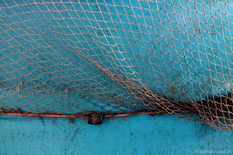 سهراب سپهری، دریا، ماهی