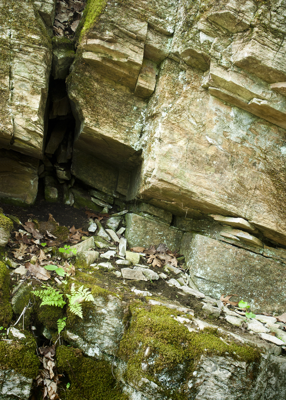 Dolomite outcropping