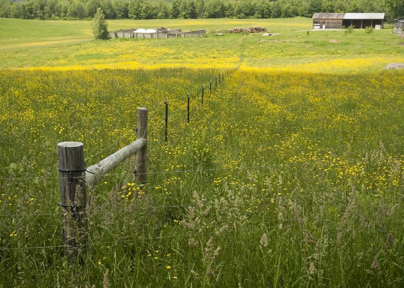Farm fields in Vermont.