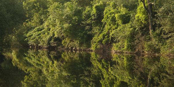 The Walloomsac River at dawn.