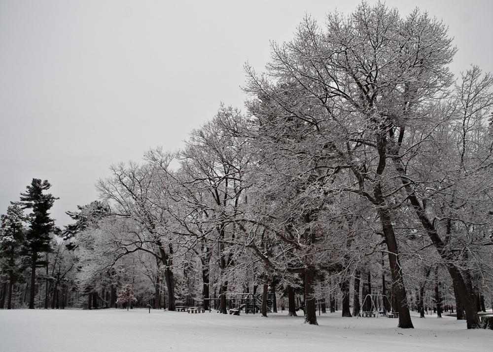 Spring snow in Vemront