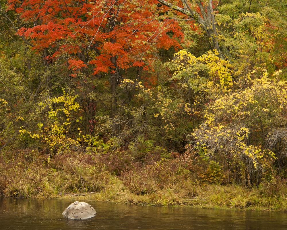 Otter Creek, Vermont