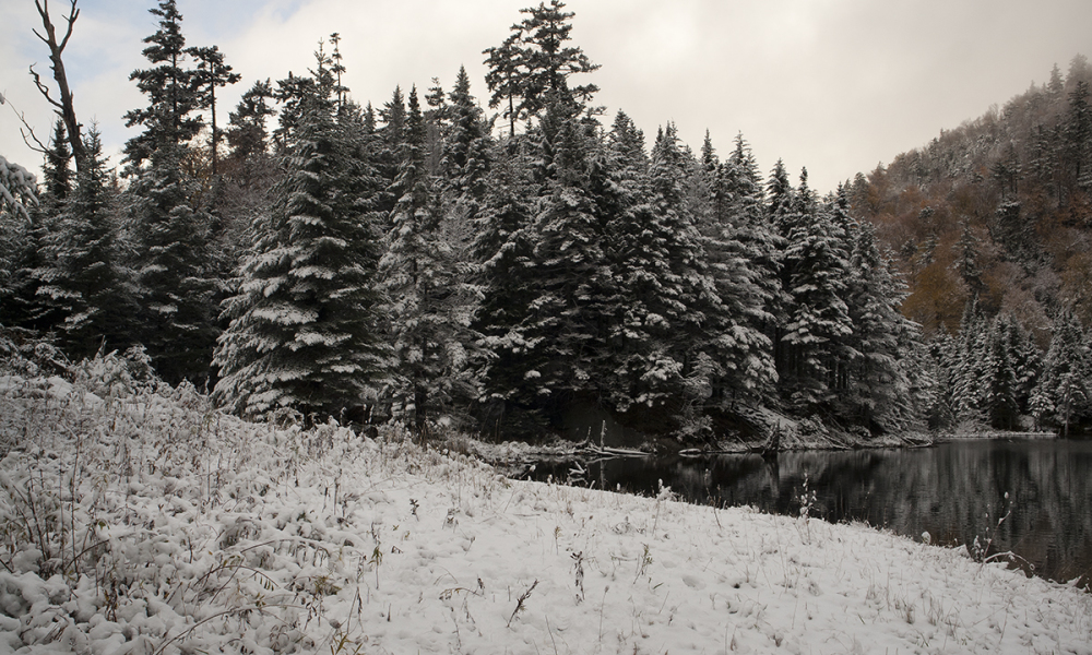 Early snow in Vermont