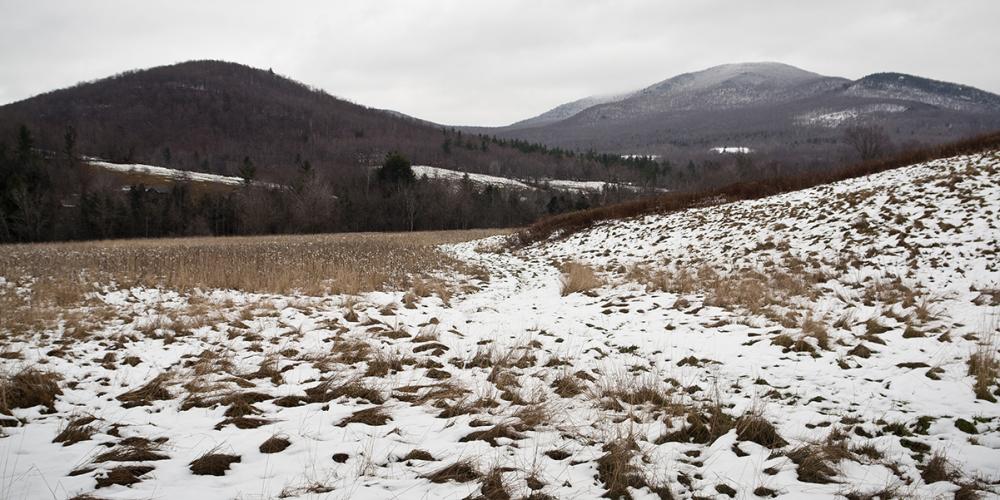 Snowing in Huntington, Vermont