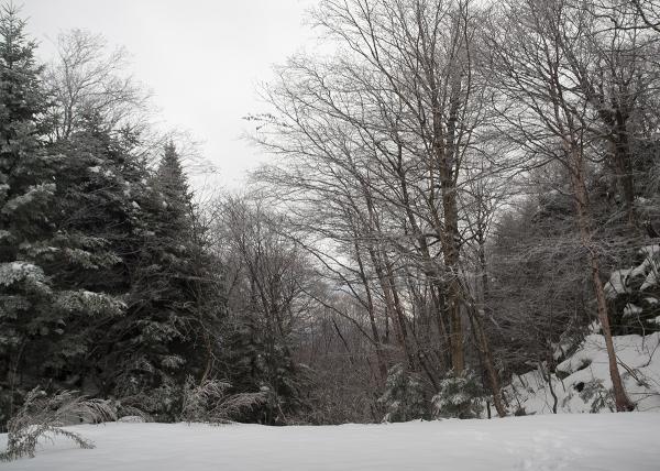 Buels Gore, Vermont