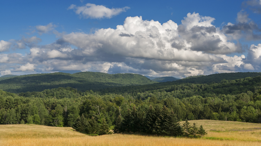 Vermont Midsummer