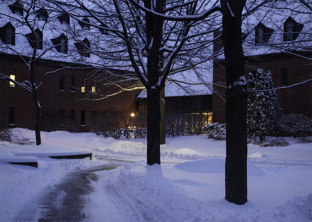 Mornng Snow