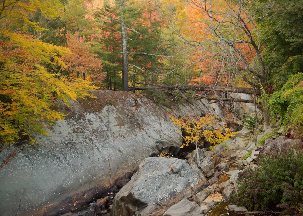 Vermont's Early Autumn