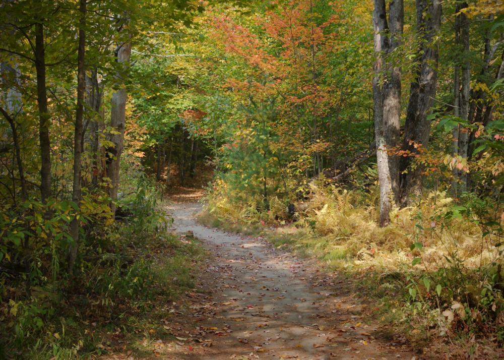 Fall Foliage n Vermont