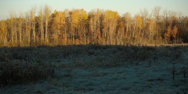 Sunrise in Williston, Vermont