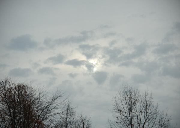 Vermont Sunshine