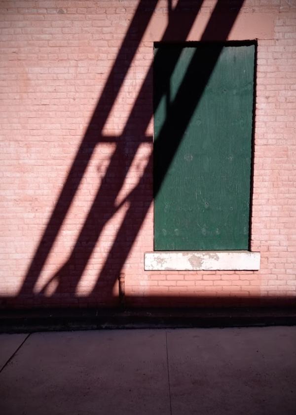Late Winter Shadow