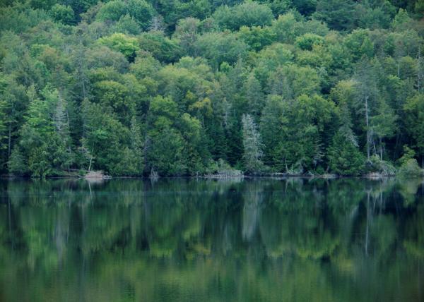 Stiles Pond, Waterford, Vermont