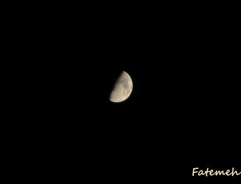 Moony Fleeing