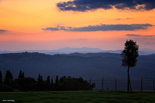 Twilight in Montalcino