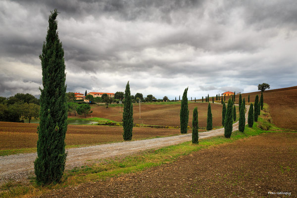 Farm entrance in Malione In Toscana, Italy