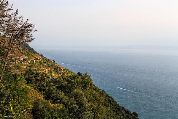Cinque Terre View