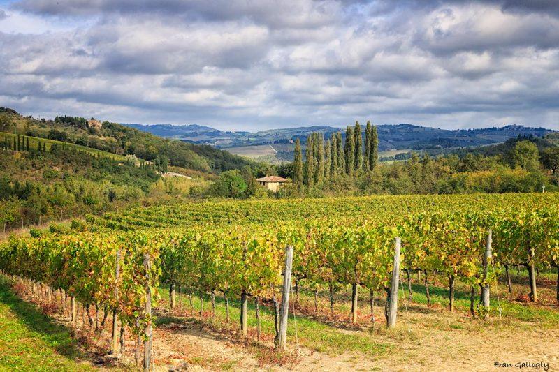 Chianti Country, Tuscany
