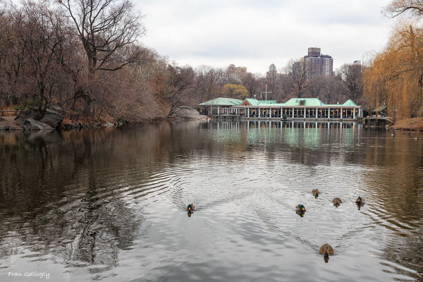 Loeb Boathouse, Central Park