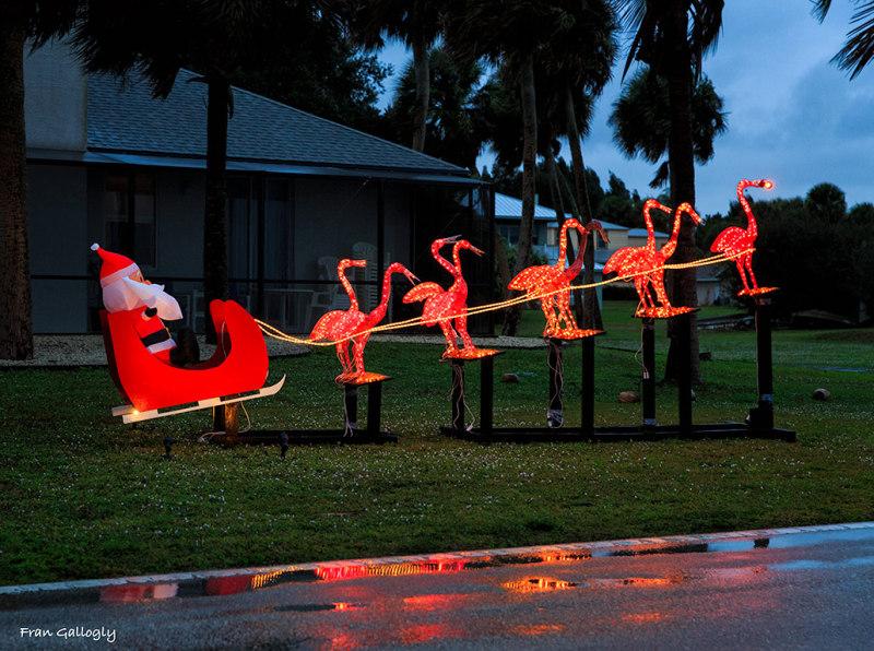 Santa and Rudolph Flamingo