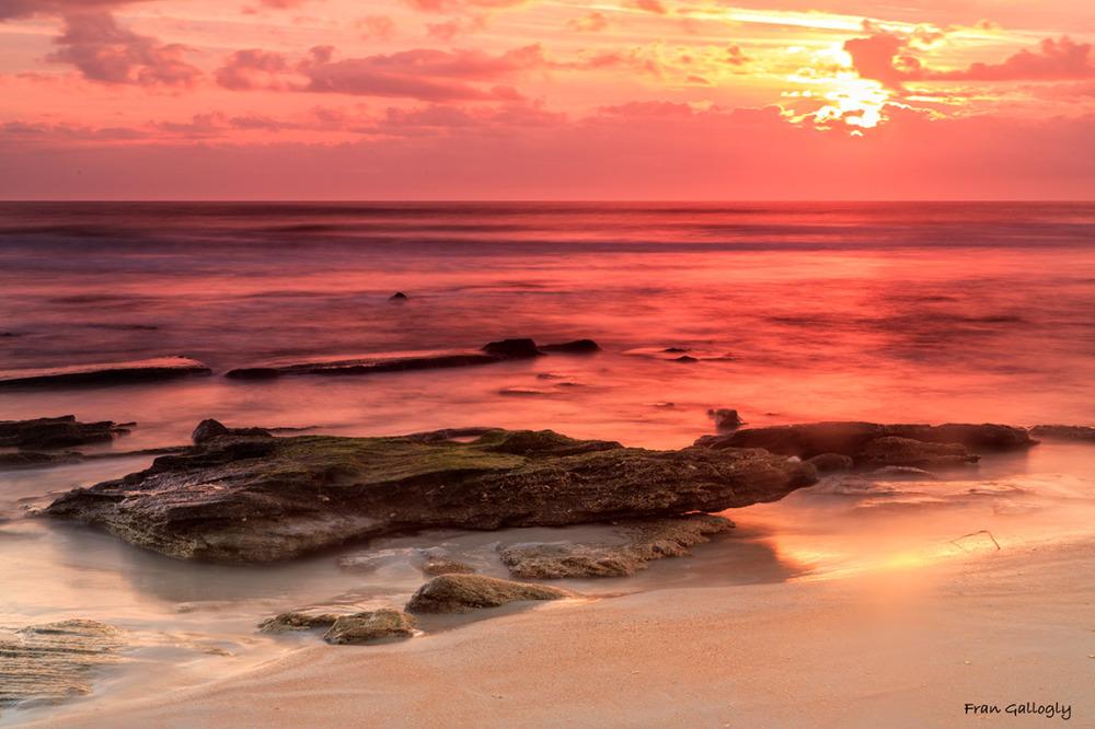 Coquina Boulder at Dawn in Palm Coast FL