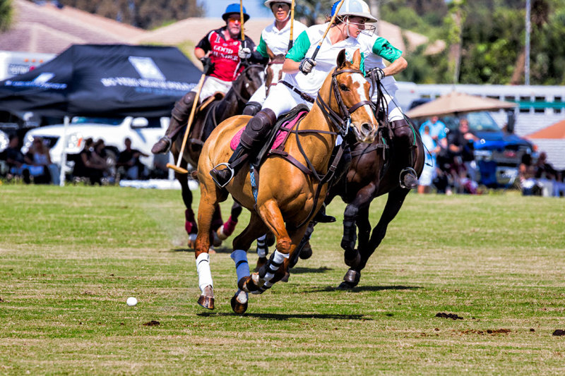 Polo Match at BG Polo & Equestrian, Vero Beach, Fl
