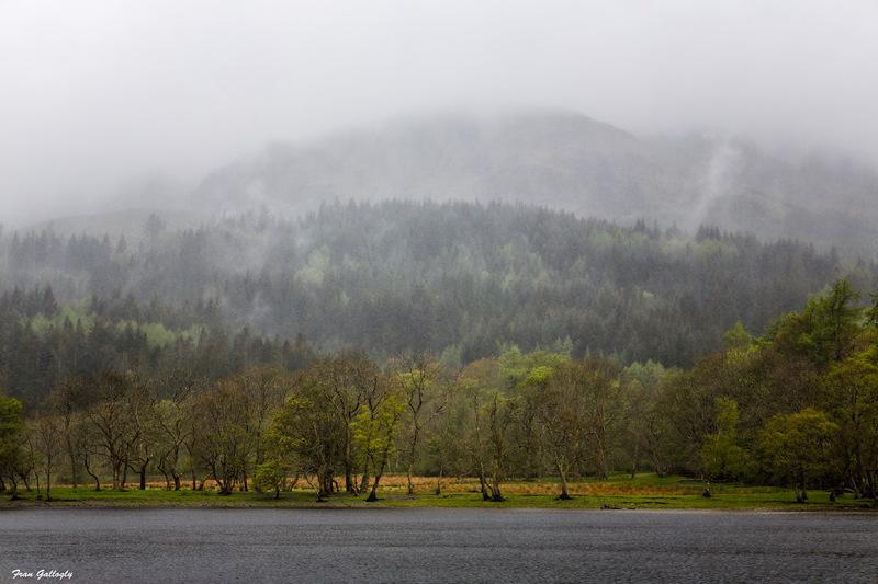 Fog Over Loch Lubnaig