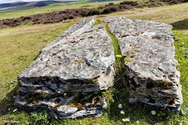 ring of brodar,standing stones,orkney,scotland,UK,