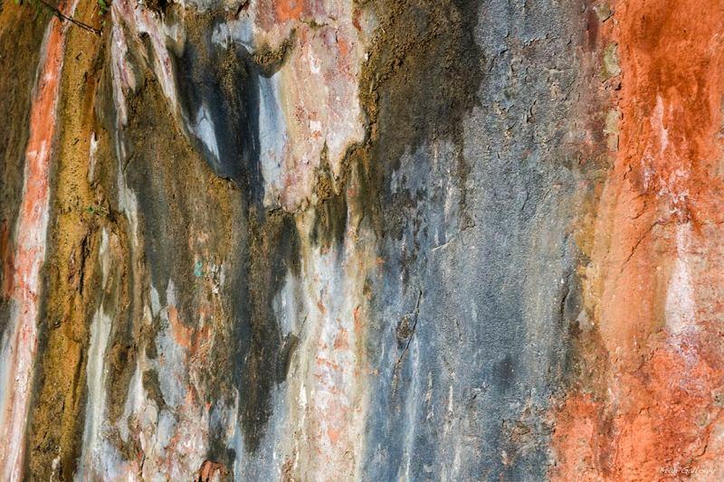 Lichen, Weeping Rock