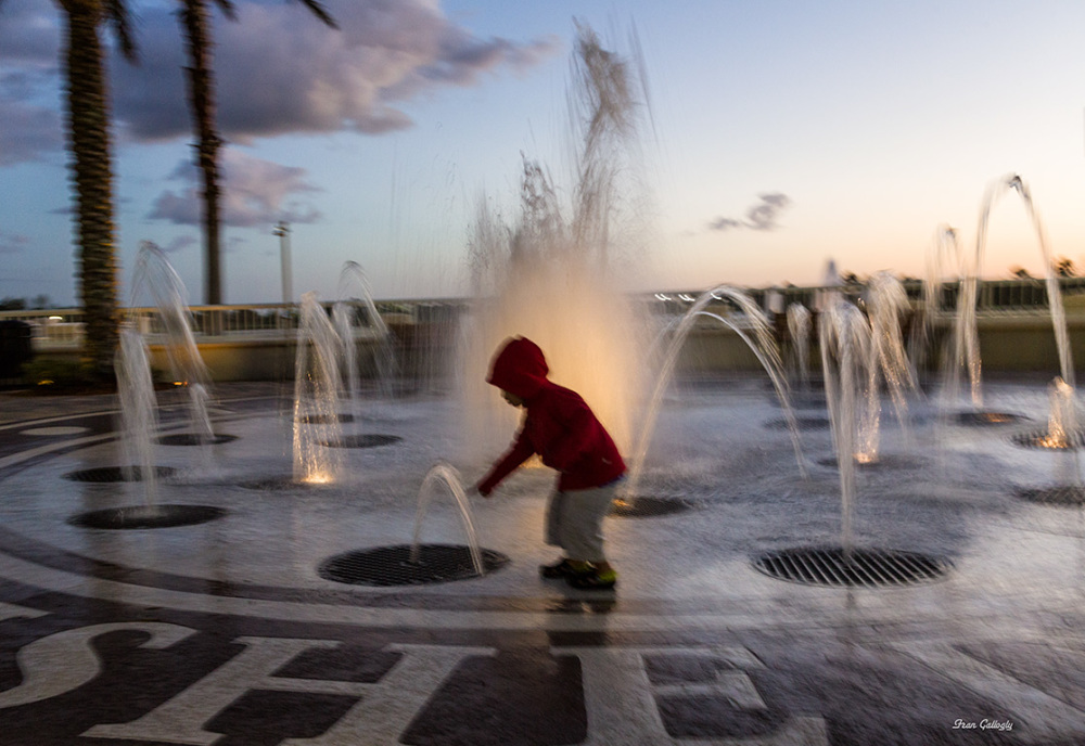 In the Night Fountain