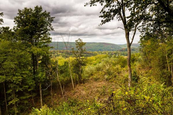 Dover Plains Vista