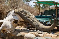 Entry to Lower Zambezi National Park