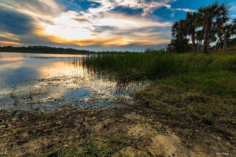 sunset at the George E. LeStrange Preserve, Florid