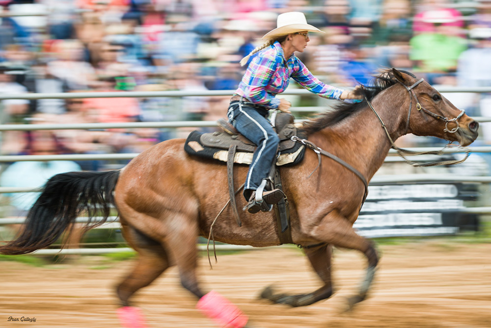 Barrel rider at Fellsmere rodeo, Florida