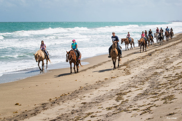 Riding horses by the ocean on Hutchinson island, F