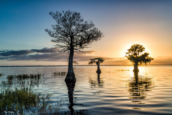 Blue Cypress Lake at sunrise in Vero Beach FL