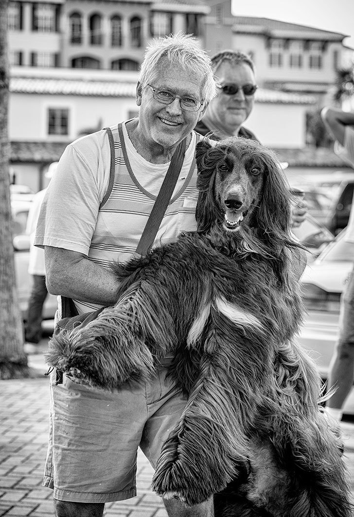 Man with his afghan hound at the farmers market fl