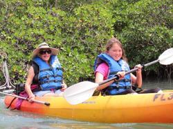 kayaking in mangroves in florida