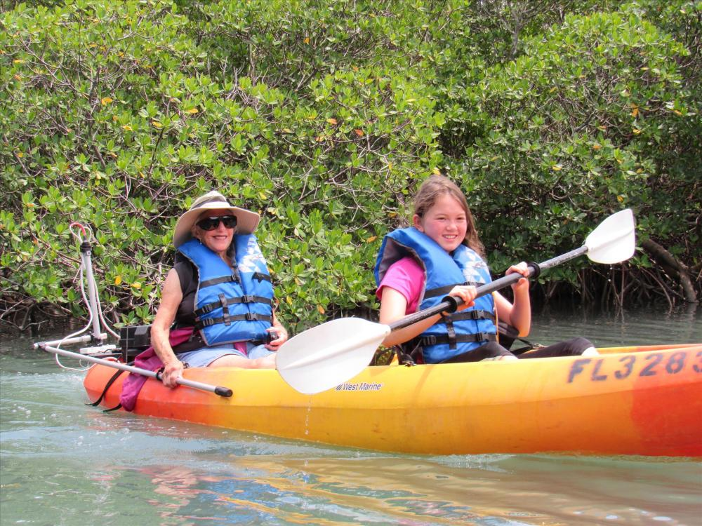 kayaking in mangroves in florida