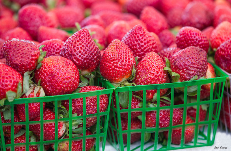 Strawberries from Plant City, FL, at farmers