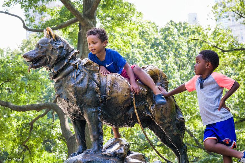 statue of Balto, Alakan sled dog, Central Park, NY