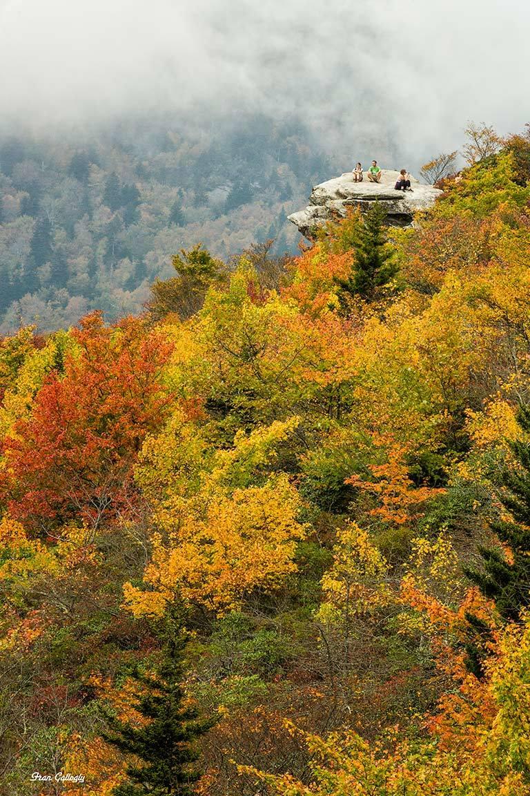 Foliage and view on Rough Ridge, Blue Ridge Pkwy