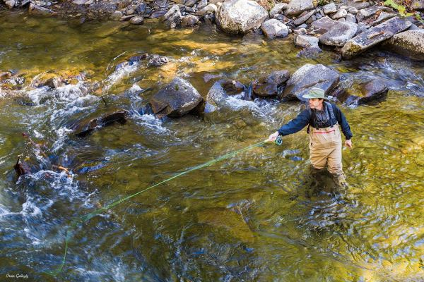 Fly Fisherman in the Smokies